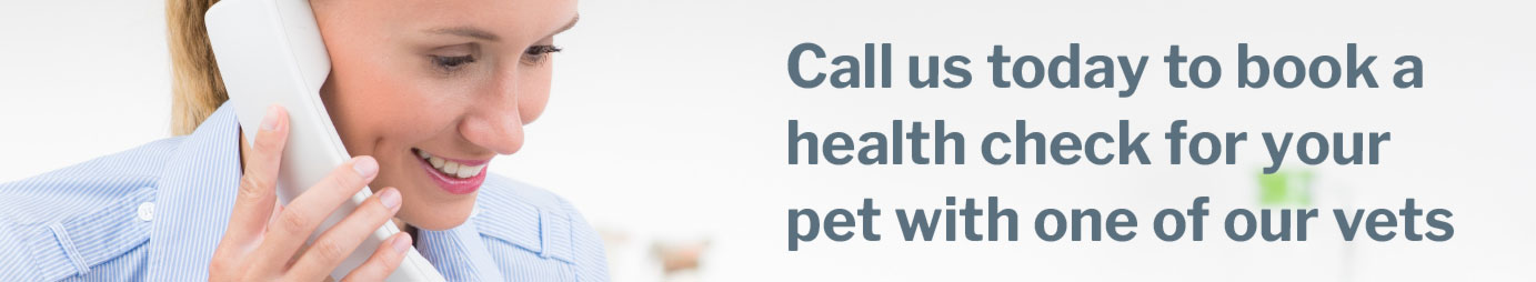 Veterinarians for all your pet's care needs