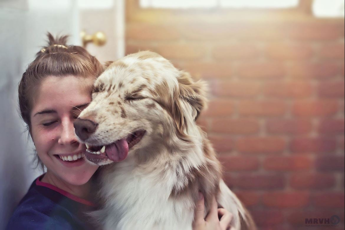 Vet Nurse Brittany with border collie